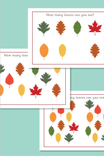 Counting / Estimating Flash Cards - Leaves