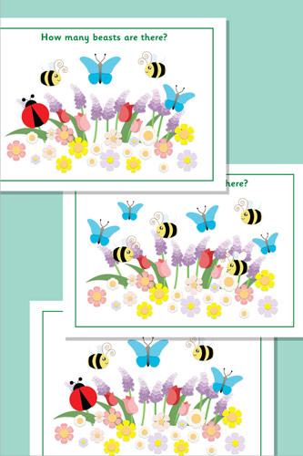 Estimating / Counting Minibeasts Flash Cards